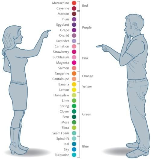 culori - bărbați vs femei